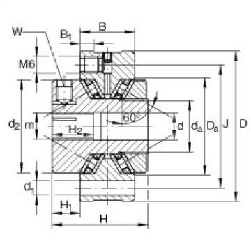 Complex Bearings ZAXFM1255 INA