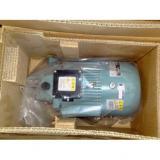 NACHI IPH Series Gear Pump VDR-1B-1A1-13